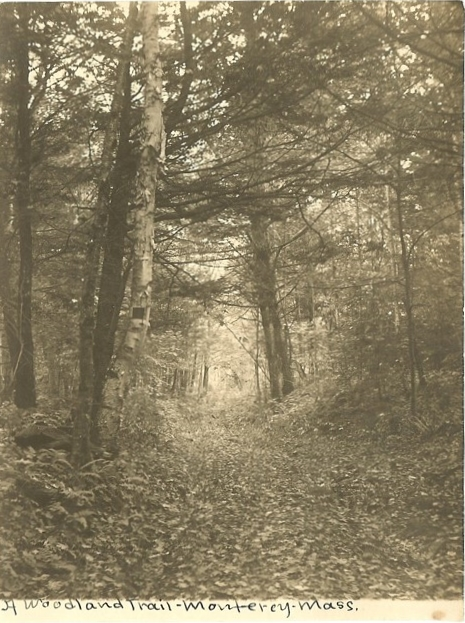 Sepia toned 19th century image of a woodland trail in Monterey Massachusetts