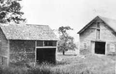 Bidwell House Museum, Black and white photo, Woodshed now the Horse barn, with old barn that has since been demolished, c.1900